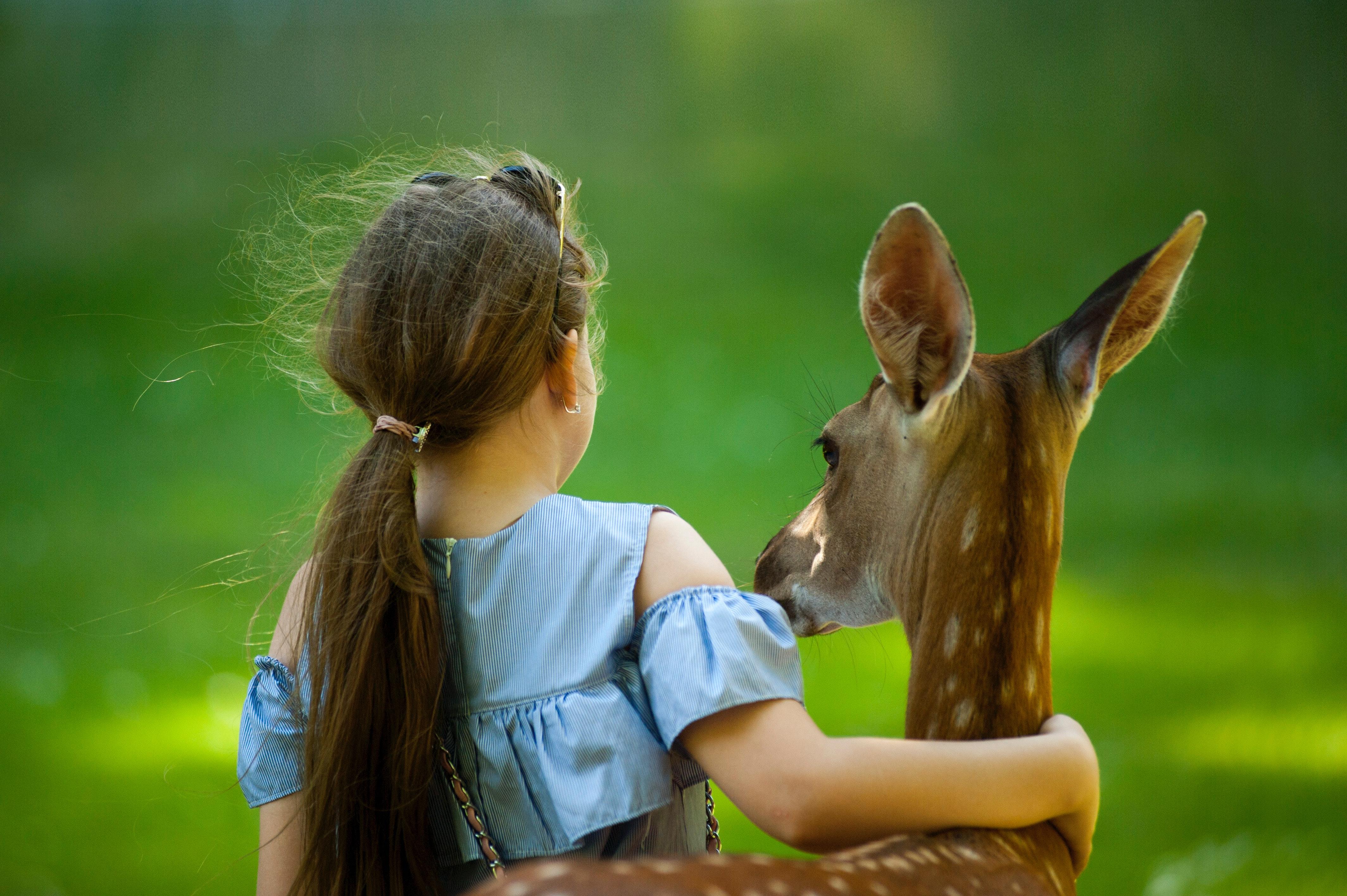 menina abraçando um cervo