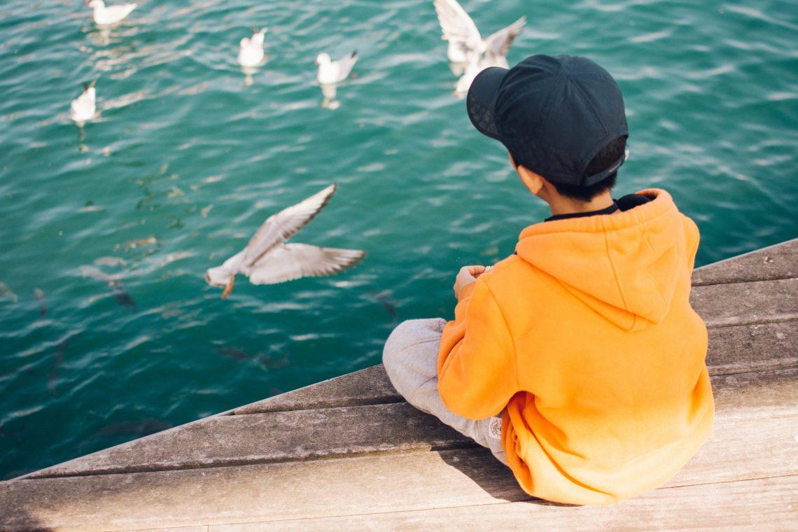 criança sentada na beira de um deck com passarinhos voando